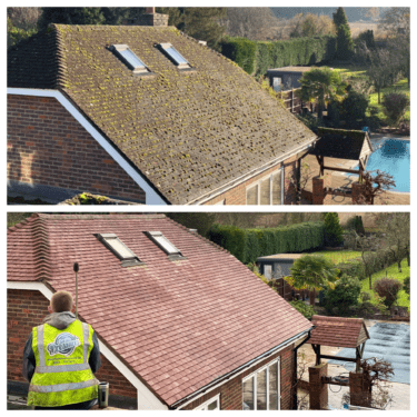 Professional roof cleaning & protection services