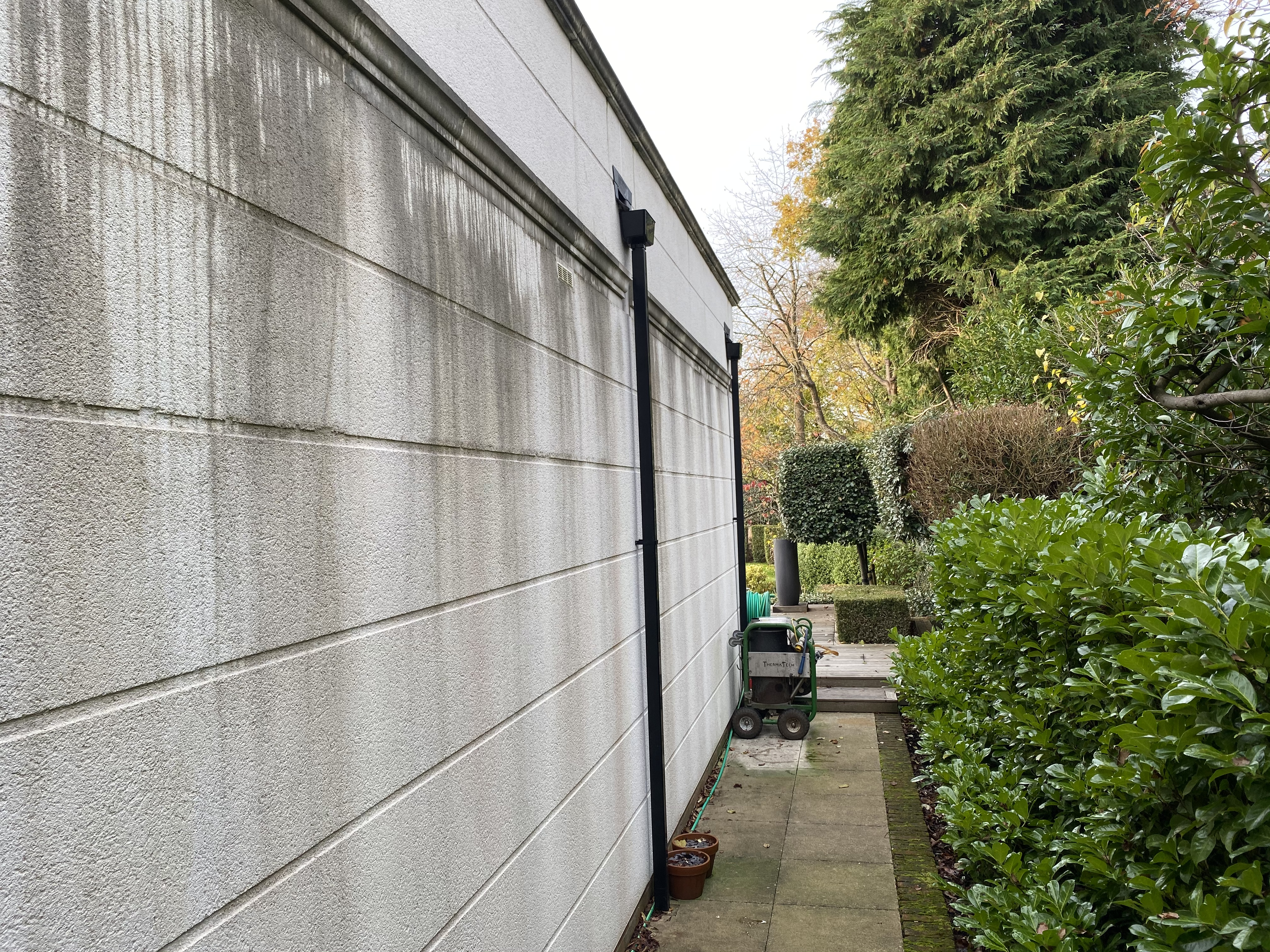 How to remove algae from render & painted exterior surfaces